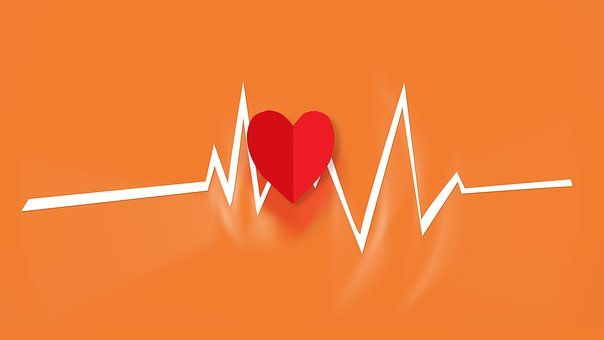How to Make Your Phone Your Personal Trainer heart rate