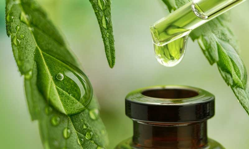 What is CBD? An Easy Quick Way to take KW CBD Oil Every Day